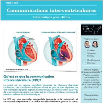 Communications interventriculaires