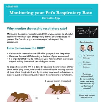 Monitoring your Pet's Respiratory Rate with Cardalis App