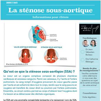 Sténose sous-aortique