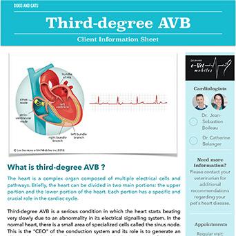 Third-degree AVB