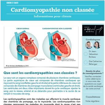 Cardiomyopathie non classée