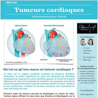 Tumeurs cardiaques