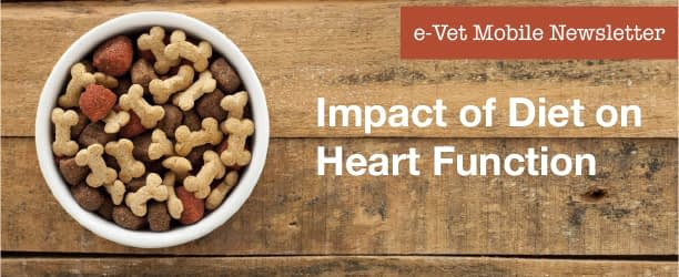 The impact of a diet on heart function