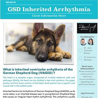 GSD Inherited Arrhythmia
