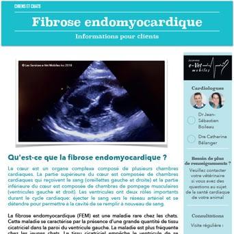 Fibrose endomyocardique