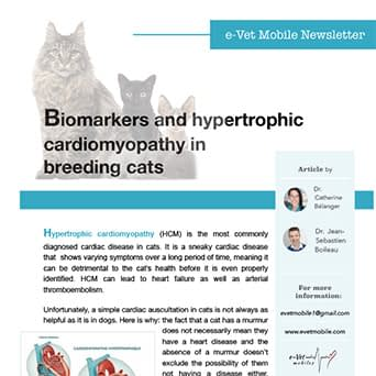 Biomarkers and hypertrophic cardiomyopathy in breeding cats